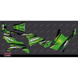 kit déco quad 750 vert...